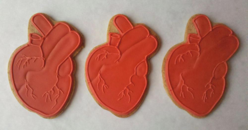 Corazón (Anatomical Heart) $8ea.